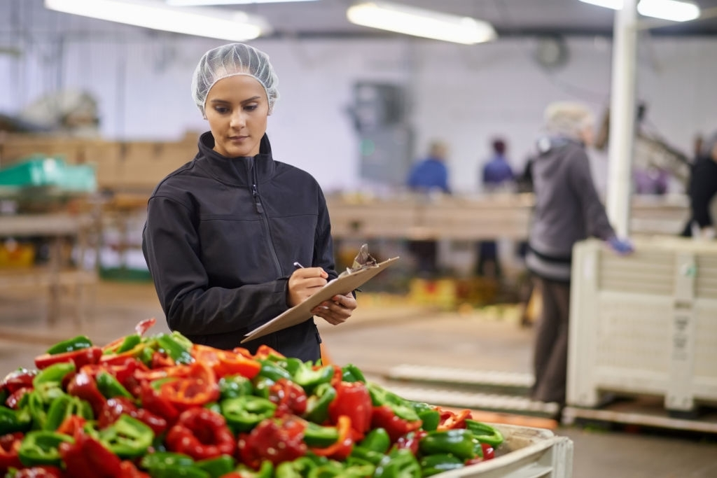 Shot of a focused young factory working doing quality control in a vegetable processing plant